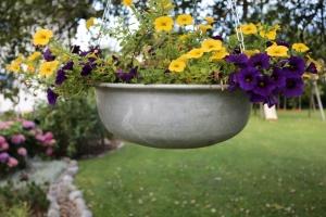 Garten mit viel Blumen